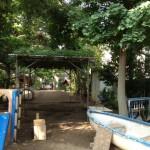園庭開放1